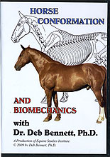 Conformation Biomechanics: The Building Blocks of Conformation by Dr. Deb Bennett