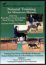 Natural Training for Miniature Horses: Session 3 by Pat Elder