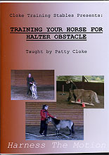 Training Your Horse For Halter Obstacle by Patty Cloke