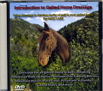 Introduction to Gaited Horse Dressage by Gary Lane