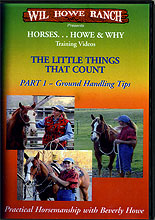 The Little things that Count: Ground Handling Tips by Wil & Bev Howe