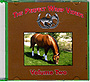 The Perfect Wrap Volume 2 - Locating & Treating Horse Injuries by Julie Parkhurst