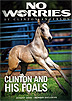 No Worries Club - Clinton Anderson and His Foals Training DVD by Clinton Anderson