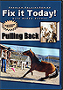 Fix It Today! Pulling Back by Karen Scholl