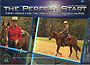 The Perfect Start: First Rides for the Pre-Saddle Trained Horse by Kalley Krickeberg
