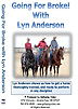 Going For Broke! by Lyn Anderson